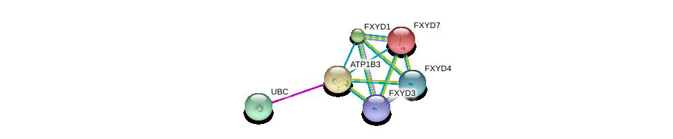http://string-db.org/version_10/api/image/networkList?limit=0&targetmode=proteins&caller_identity=gene_cards&network_flavor=evidence&identifiers=9606.ENSP00000286371%0d%0a9606.ENSP00000344818%0d%0a9606.ENSP00000389770%0d%0a9606.ENSP00000270310%0d%0a9606.ENSP00000343314%0d%0a9606.ENSP00000363575%0d%0a