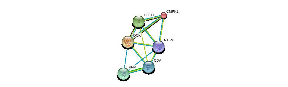 http://string-db.org/version_10/api/image/networkList?limit=0&targetmode=proteins&caller_identity=gene_cards&network_flavor=evidence&identifiers=9606.ENSP00000286648%0d%0a9606.ENSP00000349576%0d%0a9606.ENSP00000364212%0d%0a9606.ENSP00000256722%0d%0a9606.ENSP00000354532%0d%0a9606.ENSP00000373674%0d%0a