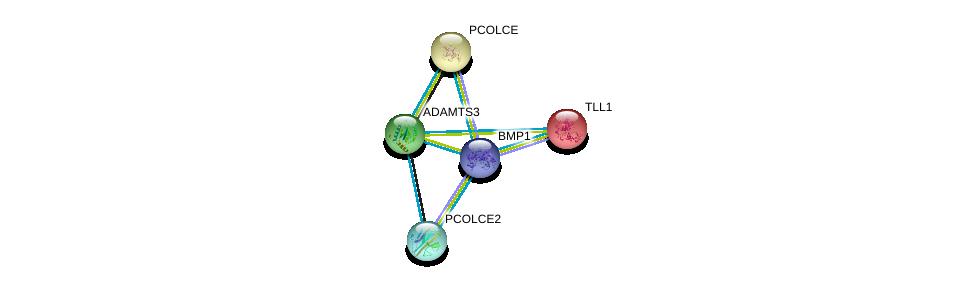 http://string-db.org/version_10/api/image/networkList?limit=0&targetmode=proteins&caller_identity=gene_cards&network_flavor=evidence&identifiers=9606.ENSP00000286657%0d%0a9606.ENSP00000305714%0d%0a9606.ENSP00000295992%0d%0a9606.ENSP00000223061%0d%0a9606.ENSP00000061240%0d%0a