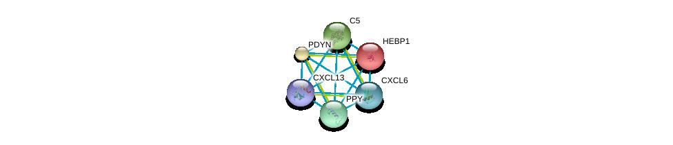 http://string-db.org/version_10/api/image/networkList?limit=0&targetmode=proteins&caller_identity=gene_cards&network_flavor=evidence&identifiers=9606.ENSP00000286758%0d%0a9606.ENSP00000014930%0d%0a9606.ENSP00000217305%0d%0a9606.ENSP00000223642%0d%0a9606.ENSP00000225992%0d%0a9606.ENSP00000226317%0d%0a