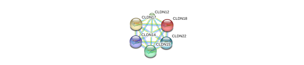 http://string-db.org/version_10/api/image/networkList?limit=0&targetmode=proteins&caller_identity=gene_cards&network_flavor=evidence&identifiers=9606.ENSP00000286808%0d%0a9606.ENSP00000287916%0d%0a9606.ENSP00000183605%0d%0a9606.ENSP00000308870%0d%0a9606.ENSP00000318113%0d%0a9606.ENSP00000339292%0d%0a