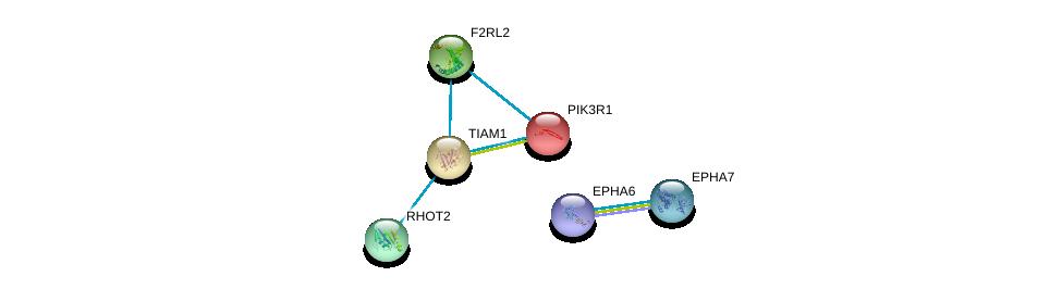 http://string-db.org/version_10/api/image/networkList?limit=0&targetmode=proteins&caller_identity=gene_cards&network_flavor=evidence&identifiers=9606.ENSP00000286827%0d%0a9606.ENSP00000358309%0d%0a9606.ENSP00000321971%0d%0a9606.ENSP00000374323%0d%0a9606.ENSP00000296641%0d%0a9606.ENSP00000274335%0d%0a