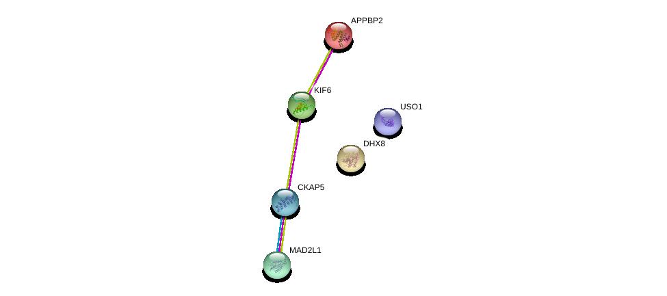 http://string-db.org/version_10/api/image/networkList?limit=0&targetmode=proteins&caller_identity=gene_cards&network_flavor=evidence&identifiers=9606.ENSP00000287152%0d%0a9606.ENSP00000083182%0d%0a9606.ENSP00000296509%0d%0a9606.ENSP00000262415%0d%0a9606.ENSP00000432768%0d%0a9606.ENSP00000440586%0d%0a