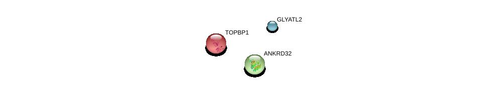 http://string-db.org/version_10/api/image/networkList?limit=0&targetmode=proteins&caller_identity=gene_cards&network_flavor=evidence&identifiers=9606.ENSP00000287275%0d%0a9606.ENSP00000260810%0d%0a9606.ENSP00000265140%0d%0a