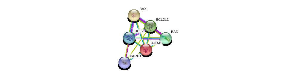 http://string-db.org/version_10/api/image/networkList?limit=0&targetmode=proteins&caller_identity=gene_cards&network_flavor=evidence&identifiers=9606.ENSP00000287295%0d%0a9606.ENSP00000293288%0d%0a9606.ENSP00000329623%0d%0a9606.ENSP00000309103%0d%0a9606.ENSP00000355759%0d%0a9606.ENSP00000302564%0d%0a