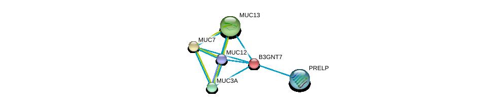 http://string-db.org/version_10/api/image/networkList?limit=0&targetmode=proteins&caller_identity=gene_cards&network_flavor=evidence&identifiers=9606.ENSP00000287590%0d%0a9606.ENSP00000441929%0d%0a9606.ENSP00000324834%0d%0a9606.ENSP00000302021%0d%0a9606.ENSP00000312235%0d%0a9606.ENSP00000343924%0d%0a