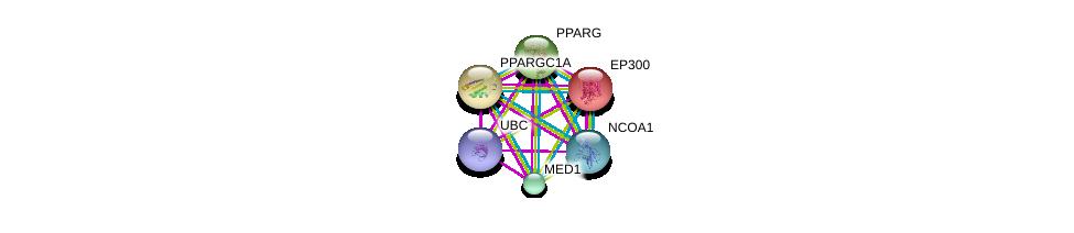 http://string-db.org/version_10/api/image/networkList?limit=0&targetmode=proteins&caller_identity=gene_cards&network_flavor=evidence&identifiers=9606.ENSP00000287820%0d%0a9606.ENSP00000300651%0d%0a9606.ENSP00000320940%0d%0a9606.ENSP00000264867%0d%0a9606.ENSP00000263253%0d%0a9606.ENSP00000344818%0d%0a