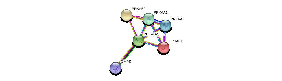 http://string-db.org/version_10/api/image/networkList?limit=0&targetmode=proteins&caller_identity=gene_cards&network_flavor=evidence&identifiers=9606.ENSP00000287878%0d%0a9606.ENSP00000229328%0d%0a9606.ENSP00000254101%0d%0a9606.ENSP00000346148%0d%0a9606.ENSP00000360290%0d%0a9606.ENSP00000419851%0d%0a