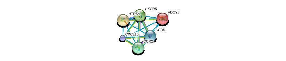 http://string-db.org/version_10/api/image/networkList?limit=0&targetmode=proteins&caller_identity=gene_cards&network_flavor=evidence&identifiers=9606.ENSP00000287907%0d%0a9606.ENSP00000292301%0d%0a9606.ENSP00000292303%0d%0a9606.ENSP00000292174%0d%0a9606.ENSP00000286355%0d%0a9606.ENSP00000293778%0d%0a