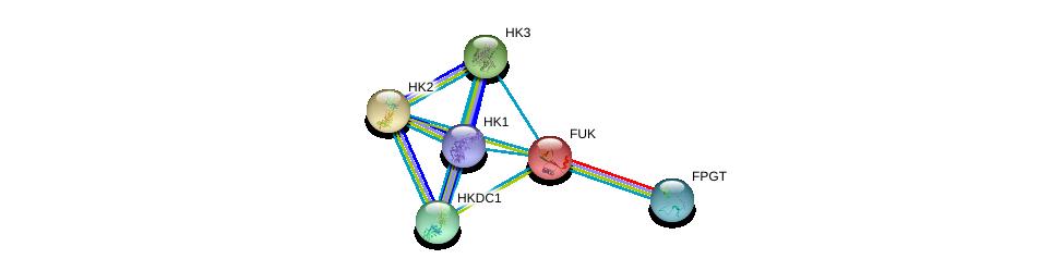 http://string-db.org/version_10/api/image/networkList?limit=0&targetmode=proteins&caller_identity=gene_cards&network_flavor=evidence&identifiers=9606.ENSP00000288078%0d%0a9606.ENSP00000359935%0d%0a9606.ENSP00000384774%0d%0a9606.ENSP00000346643%0d%0a9606.ENSP00000292432%0d%0a9606.ENSP00000290573%0d%0a