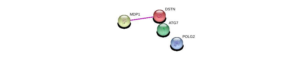 http://string-db.org/version_10/api/image/networkList?limit=0&targetmode=proteins&caller_identity=gene_cards&network_flavor=evidence&identifiers=9606.ENSP00000288087%0d%0a9606.ENSP00000246069%0d%0a9606.ENSP00000442563%0d%0a9606.ENSP00000346437%0d%0a