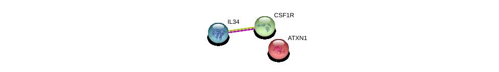 http://string-db.org/version_10/api/image/networkList?limit=0&targetmode=proteins&caller_identity=gene_cards&network_flavor=evidence&identifiers=9606.ENSP00000288098%0d%0a9606.ENSP00000286301%0d%0a9606.ENSP00000244769%0d%0a