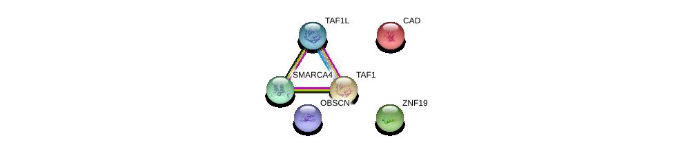 http://string-db.org/version_10/api/image/networkList?limit=0&targetmode=proteins&caller_identity=gene_cards&network_flavor=evidence&identifiers=9606.ENSP00000288177%0d%0a9606.ENSP00000264705%0d%0a9606.ENSP00000455507%0d%0a9606.ENSP00000418379%0d%0a9606.ENSP00000276072%0d%0a9606.ENSP00000350720%0d%0a