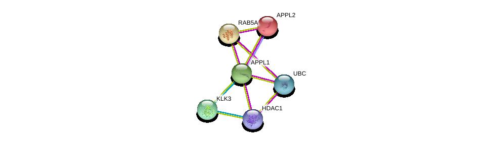 http://string-db.org/version_10/api/image/networkList?limit=0&targetmode=proteins&caller_identity=gene_cards&network_flavor=evidence&identifiers=9606.ENSP00000288266%0d%0a9606.ENSP00000344818%0d%0a9606.ENSP00000258530%0d%0a9606.ENSP00000362649%0d%0a9606.ENSP00000273047%0d%0a9606.ENSP00000314151%0d%0a