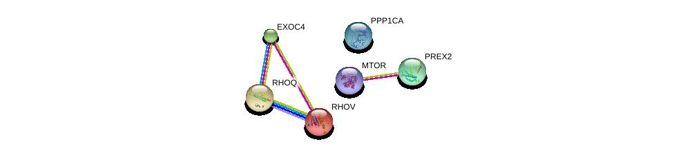 http://string-db.org/version_10/api/image/networkList?limit=0&targetmode=proteins&caller_identity=gene_cards&network_flavor=evidence&identifiers=9606.ENSP00000288368%0d%0a9606.ENSP00000354558%0d%0a9606.ENSP00000326031%0d%0a9606.ENSP00000253861%0d%0a9606.ENSP00000220507%0d%0a9606.ENSP00000238738%0d%0a