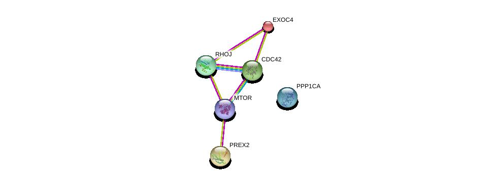 http://string-db.org/version_10/api/image/networkList?limit=0&targetmode=proteins&caller_identity=gene_cards&network_flavor=evidence&identifiers=9606.ENSP00000288368%0d%0a9606.ENSP00000354558%0d%0a9606.ENSP00000326031%0d%0a9606.ENSP00000253861%0d%0a9606.ENSP00000314458%0d%0a9606.ENSP00000316729%0d%0a