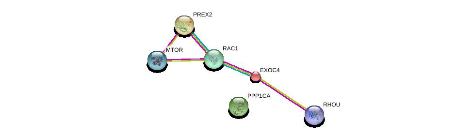 http://string-db.org/version_10/api/image/networkList?limit=0&targetmode=proteins&caller_identity=gene_cards&network_flavor=evidence&identifiers=9606.ENSP00000288368%0d%0a9606.ENSP00000354558%0d%0a9606.ENSP00000326031%0d%0a9606.ENSP00000253861%0d%0a9606.ENSP00000348461%0d%0a9606.ENSP00000355652%0d%0a