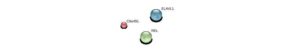 http://string-db.org/version_10/api/image/networkList?limit=0&targetmode=proteins&caller_identity=gene_cards&network_flavor=evidence&identifiers=9606.ENSP00000288502%0d%0a9606.ENSP00000385269%0d%0a9606.ENSP00000295025%0d%0a
