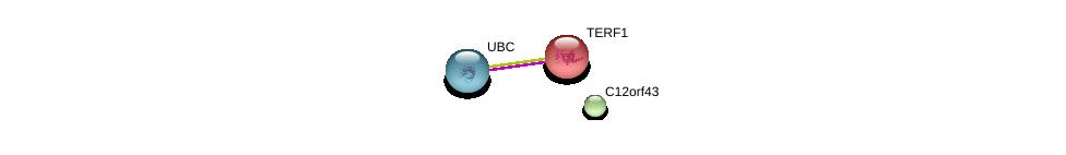 http://string-db.org/version_10/api/image/networkList?limit=0&targetmode=proteins&caller_identity=gene_cards&network_flavor=evidence&identifiers=9606.ENSP00000288757%0d%0a9606.ENSP00000276603%0d%0a9606.ENSP00000344818%0d%0a