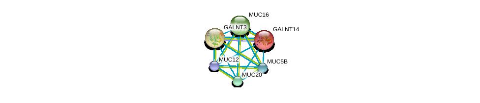 http://string-db.org/version_10/api/image/networkList?limit=0&targetmode=proteins&caller_identity=gene_cards&network_flavor=evidence&identifiers=9606.ENSP00000288988%0d%0a9606.ENSP00000441929%0d%0a9606.ENSP00000436812%0d%0a9606.ENSP00000396774%0d%0a9606.ENSP00000381008%0d%0a9606.ENSP00000376465%0d%0a