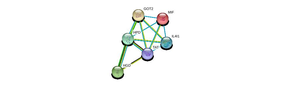 http://string-db.org/version_10/api/image/networkList?limit=0&targetmode=proteins&caller_identity=gene_cards&network_flavor=evidence&identifiers=9606.ENSP00000289004%0d%0a9606.ENSP00000245206%0d%0a9606.ENSP00000348234%0d%0a9606.ENSP00000342557%0d%0a9606.ENSP00000215754%0d%0a9606.ENSP00000283871%0d%0a