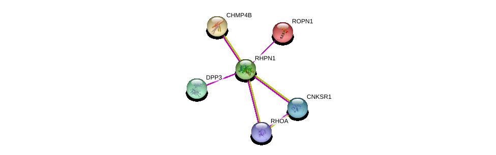 http://string-db.org/version_10/api/image/networkList?limit=0&targetmode=proteins&caller_identity=gene_cards&network_flavor=evidence&identifiers=9606.ENSP00000289013%0d%0a9606.ENSP00000353701%0d%0a9606.ENSP00000184183%0d%0a9606.ENSP00000400175%0d%0a9606.ENSP00000354609%0d%0a9606.ENSP00000217402%0d%0a