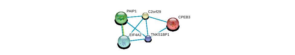 http://string-db.org/version_10/api/image/networkList?limit=0&targetmode=proteins&caller_identity=gene_cards&network_flavor=evidence&identifiers=9606.ENSP00000289382%0d%0a9606.ENSP00000302768%0d%0a9606.ENSP00000326381%0d%0a9606.ENSP00000326381%0d%0a9606.ENSP00000350990%0d%0a9606.ENSP00000265997%0d%0a