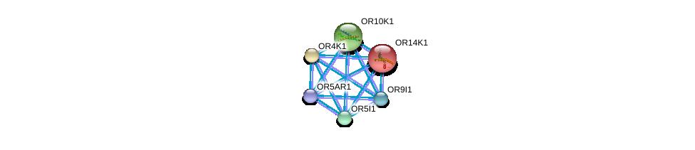 http://string-db.org/version_10/api/image/networkList?limit=0&targetmode=proteins&caller_identity=gene_cards&network_flavor=evidence&identifiers=9606.ENSP00000289451%0d%0a9606.ENSP00000283225%0d%0a9606.ENSP00000285600%0d%0a9606.ENSP00000301532%0d%0a9606.ENSP00000302606%0d%0a9606.ENSP00000302639%0d%0a