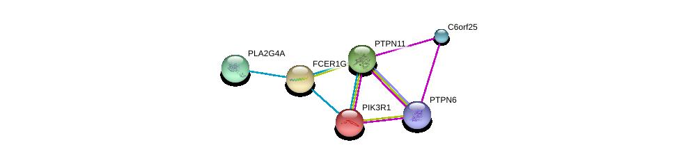 http://string-db.org/version_10/api/image/networkList?limit=0&targetmode=proteins&caller_identity=gene_cards&network_flavor=evidence&identifiers=9606.ENSP00000289902%0d%0a9606.ENSP00000274335%0d%0a9606.ENSP00000356436%0d%0a9606.ENSP00000364964%0d%0a9606.ENSP00000391592%0d%0a9606.ENSP00000340944%0d%0a