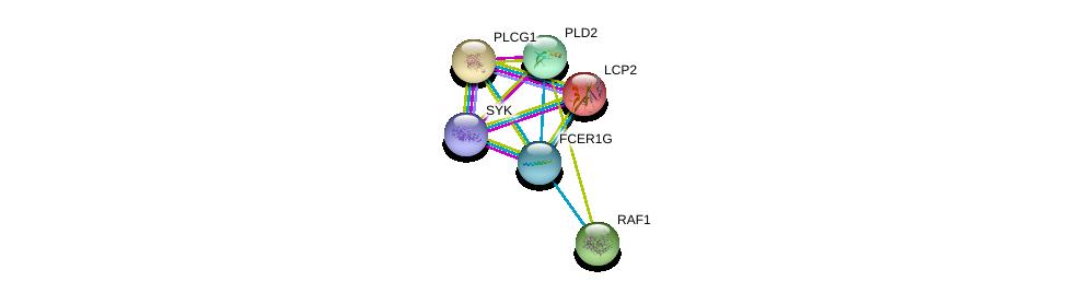 http://string-db.org/version_10/api/image/networkList?limit=0&targetmode=proteins&caller_identity=gene_cards&network_flavor=evidence&identifiers=9606.ENSP00000289902%0d%0a9606.ENSP00000364898%0d%0a9606.ENSP00000046794%0d%0a9606.ENSP00000244007%0d%0a9606.ENSP00000251849%0d%0a9606.ENSP00000263088%0d%0a