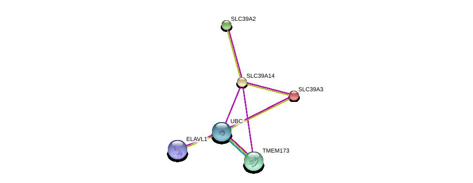 http://string-db.org/version_10/api/image/networkList?limit=0&targetmode=proteins&caller_identity=gene_cards&network_flavor=evidence&identifiers=9606.ENSP00000289952%0d%0a9606.ENSP00000344818%0d%0a9606.ENSP00000331288%0d%0a9606.ENSP00000385269%0d%0a9606.ENSP00000269740%0d%0a9606.ENSP00000298681%0d%0a