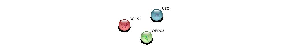 http://string-db.org/version_10/api/image/networkList?limit=0&targetmode=proteins&caller_identity=gene_cards&network_flavor=evidence&identifiers=9606.ENSP00000289953%0d%0a9606.ENSP00000344818%0d%0a9606.ENSP00000255448%0d%0a
