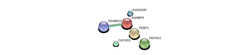 http://string-db.org/version_10/api/image/networkList?limit=0&targetmode=proteins&caller_identity=gene_cards&network_flavor=evidence&identifiers=9606.ENSP00000290039%0d%0a9606.ENSP00000265094%0d%0a9606.ENSP00000011619%0d%0a9606.ENSP00000261313%0d%0a9606.ENSP00000313933%0d%0a9606.ENSP00000316589%0d%0a