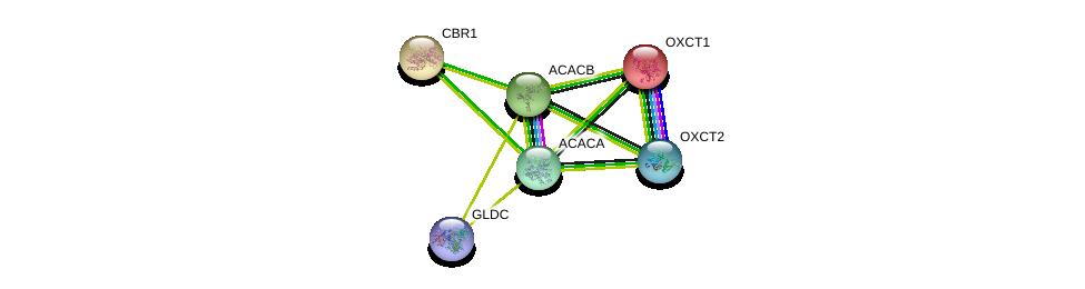 http://string-db.org/version_10/api/image/networkList?limit=0&targetmode=proteins&caller_identity=gene_cards&network_flavor=evidence&identifiers=9606.ENSP00000290349%0d%0a9606.ENSP00000361914%0d%0a9606.ENSP00000196371%0d%0a9606.ENSP00000370737%0d%0a9606.ENSP00000341044%0d%0a9606.ENSP00000344789%0d%0a