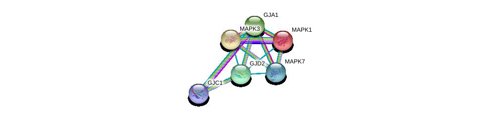 http://string-db.org/version_10/api/image/networkList?limit=0&targetmode=proteins&caller_identity=gene_cards&network_flavor=evidence&identifiers=9606.ENSP00000290374%0d%0a9606.ENSP00000333193%0d%0a9606.ENSP00000282561%0d%0a9606.ENSP00000215832%0d%0a9606.ENSP00000311005%0d%0a9606.ENSP00000263025%0d%0a