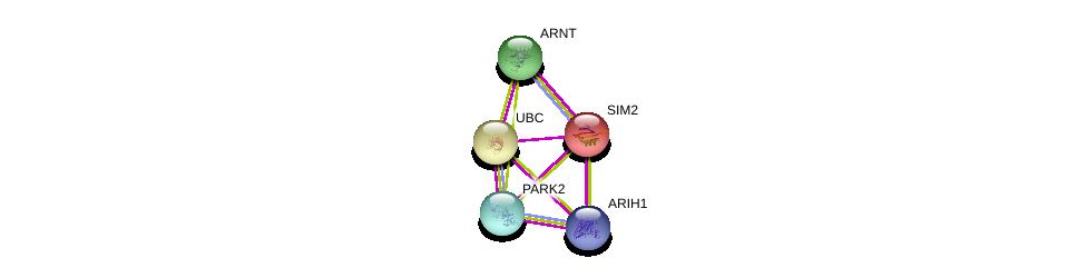 http://string-db.org/version_10/api/image/networkList?limit=0&targetmode=proteins&caller_identity=gene_cards&network_flavor=evidence&identifiers=9606.ENSP00000290399%0d%0a9606.ENSP00000351407%0d%0a9606.ENSP00000369217%0d%0a9606.ENSP00000369217%0d%0a9606.ENSP00000355865%0d%0a9606.ENSP00000344818%0d%0a