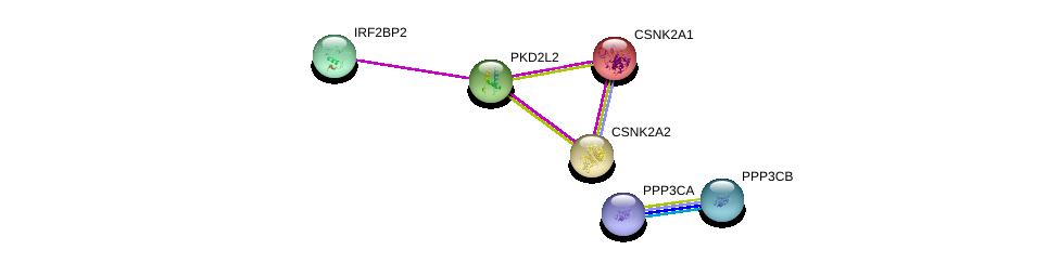 http://string-db.org/version_10/api/image/networkList?limit=0&targetmode=proteins&caller_identity=gene_cards&network_flavor=evidence&identifiers=9606.ENSP00000290431%0d%0a9606.ENSP00000355568%0d%0a9606.ENSP00000262506%0d%0a9606.ENSP00000217244%0d%0a9606.ENSP00000378323%0d%0a9606.ENSP00000378306%0d%0a
