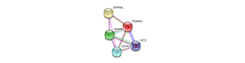 http://string-db.org/version_10/api/image/networkList?limit=0&targetmode=proteins&caller_identity=gene_cards&network_flavor=evidence&identifiers=9606.ENSP00000290541%0d%0a9606.ENSP00000223321%0d%0a9606.ENSP00000356425%0d%0a9606.ENSP00000248566%0d%0a9606.ENSP00000248566%0d%0a9606.ENSP00000455744%0d%0a