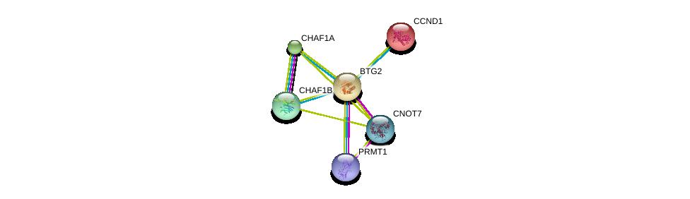 http://string-db.org/version_10/api/image/networkList?limit=0&targetmode=proteins&caller_identity=gene_cards&network_flavor=evidence&identifiers=9606.ENSP00000290551%0d%0a9606.ENSP00000406162%0d%0a9606.ENSP00000355279%0d%0a9606.ENSP00000227507%0d%0a9606.ENSP00000301280%0d%0a9606.ENSP00000315700%0d%0a