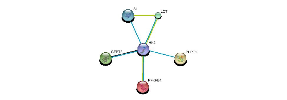 http://string-db.org/version_10/api/image/networkList?limit=0&targetmode=proteins&caller_identity=gene_cards&network_flavor=evidence&identifiers=9606.ENSP00000290573%0d%0a9606.ENSP00000232375%0d%0a9606.ENSP00000247665%0d%0a9606.ENSP00000253778%0d%0a9606.ENSP00000264162%0d%0a9606.ENSP00000264382%0d%0a