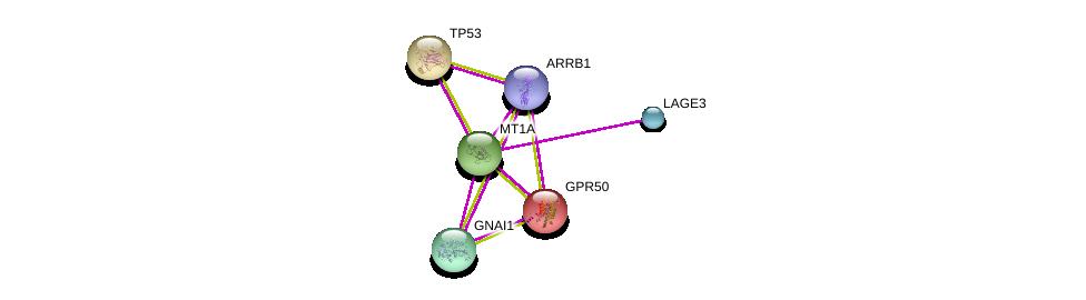 http://string-db.org/version_10/api/image/networkList?limit=0&targetmode=proteins&caller_identity=gene_cards&network_flavor=evidence&identifiers=9606.ENSP00000290705%0d%0a9606.ENSP00000349923%0d%0a9606.ENSP00000269305%0d%0a9606.ENSP00000343027%0d%0a9606.ENSP00000218316%0d%0a9606.ENSP00000409581%0d%0a
