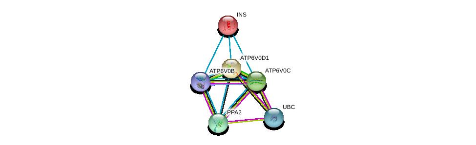 http://string-db.org/version_10/api/image/networkList?limit=0&targetmode=proteins&caller_identity=gene_cards&network_flavor=evidence&identifiers=9606.ENSP00000290949%0d%0a9606.ENSP00000344818%0d%0a9606.ENSP00000250971%0d%0a9606.ENSP00000343885%0d%0a9606.ENSP00000329757%0d%0a9606.ENSP00000431605%0d%0a