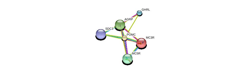 http://string-db.org/version_10/api/image/networkList?limit=0&targetmode=proteins&caller_identity=gene_cards&network_flavor=evidence&identifiers=9606.ENSP00000290953%0d%0a9606.ENSP00000264708%0d%0a9606.ENSP00000344468%0d%0a9606.ENSP00000318077%0d%0a9606.ENSP00000243911%0d%0a9606.ENSP00000335074%0d%0a