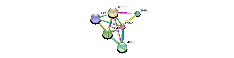 http://string-db.org/version_10/api/image/networkList?limit=0&targetmode=proteins&caller_identity=gene_cards&network_flavor=evidence&identifiers=9606.ENSP00000290953%0d%0a9606.ENSP00000299766%0d%0a9606.ENSP00000344468%0d%0a9606.ENSP00000264708%0d%0a9606.ENSP00000335074%0d%0a9606.ENSP00000318077%0d%0a