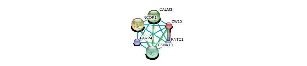 http://string-db.org/version_10/api/image/networkList?limit=0&targetmode=proteins&caller_identity=gene_cards&network_flavor=evidence&identifiers=9606.ENSP00000291295%0d%0a9606.ENSP00000371419%0d%0a9606.ENSP00000328236%0d%0a9606.ENSP00000200135%0d%0a9606.ENSP00000268712%0d%0a9606.ENSP00000324464%0d%0a