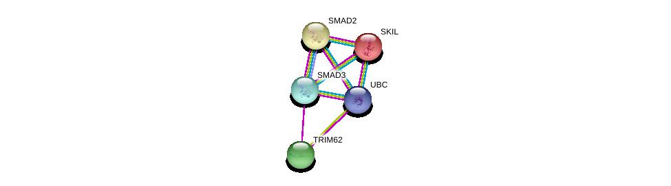 http://string-db.org/version_10/api/image/networkList?limit=0&targetmode=proteins&caller_identity=gene_cards&network_flavor=evidence&identifiers=9606.ENSP00000291416%0d%0a9606.ENSP00000332973%0d%0a9606.ENSP00000344818%0d%0a9606.ENSP00000259119%0d%0a9606.ENSP00000262160%0d%0a