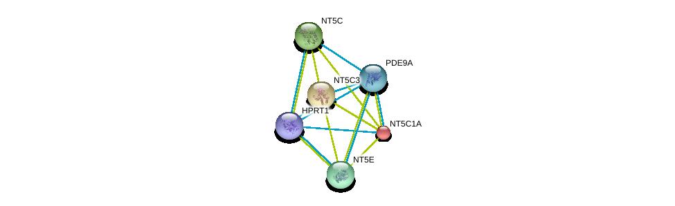 http://string-db.org/version_10/api/image/networkList?limit=0&targetmode=proteins&caller_identity=gene_cards&network_flavor=evidence&identifiers=9606.ENSP00000291539%0d%0a9606.ENSP00000242210%0d%0a9606.ENSP00000245552%0d%0a9606.ENSP00000257770%0d%0a9606.ENSP00000235628%0d%0a9606.ENSP00000298556%0d%0a