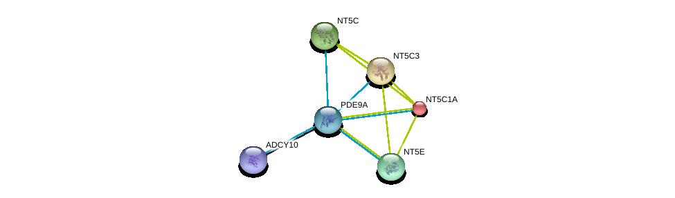 http://string-db.org/version_10/api/image/networkList?limit=0&targetmode=proteins&caller_identity=gene_cards&network_flavor=evidence&identifiers=9606.ENSP00000291539%0d%0a9606.ENSP00000257770%0d%0a9606.ENSP00000356825%0d%0a9606.ENSP00000235628%0d%0a9606.ENSP00000242210%0d%0a9606.ENSP00000245552%0d%0a