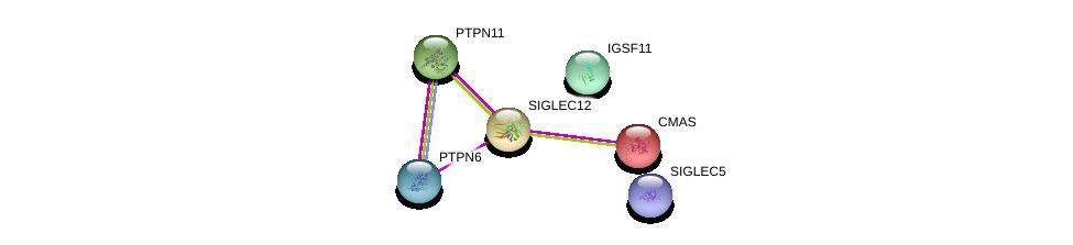 http://string-db.org/version_10/api/image/networkList?limit=0&targetmode=proteins&caller_identity=gene_cards&network_flavor=evidence&identifiers=9606.ENSP00000291707%0d%0a9606.ENSP00000391592%0d%0a9606.ENSP00000340944%0d%0a9606.ENSP00000229329%0d%0a9606.ENSP00000377370%0d%0a9606.ENSP00000455510%0d%0a