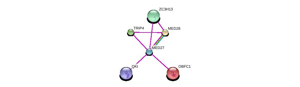 http://string-db.org/version_10/api/image/networkList?limit=0&targetmode=proteins&caller_identity=gene_cards&network_flavor=evidence&identifiers=9606.ENSP00000292035%0d%0a9606.ENSP00000355094%0d%0a9606.ENSP00000261884%0d%0a9606.ENSP00000282007%0d%0a9606.ENSP00000224950%0d%0a9606.ENSP00000237380%0d%0a